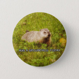 Hug a groundhog today button