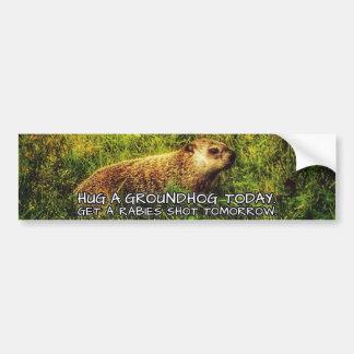 Hug a groundhog today. Get a rabies shot tomorrow. Bumper Sticker
