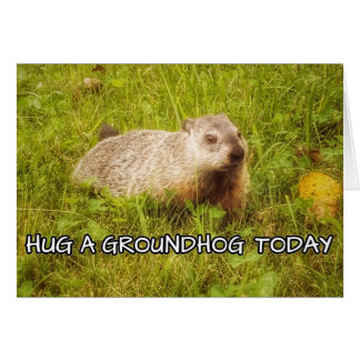 Hug a groundhog today greeting card