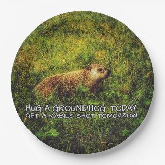 Hug a groundhog today plates