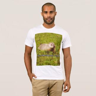 Hug a groundhog today t-shirt