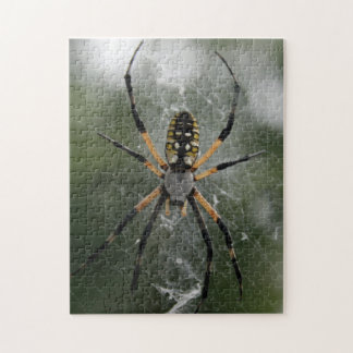 Huge Spider / Yellow & Black Argiope Jigsaw Puzzle