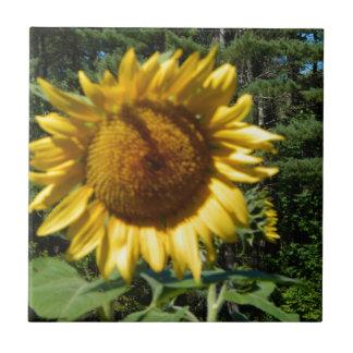 Huge Sunflower Tile