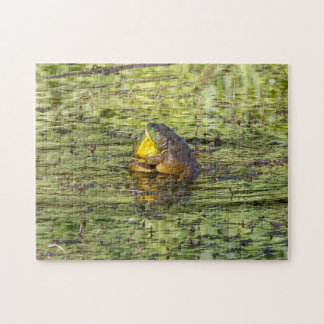 Hugging Frogs Puzzles
