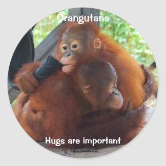Hugs Are Important Classic Round Sticker