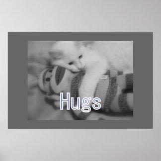 Hugs kitty Poster