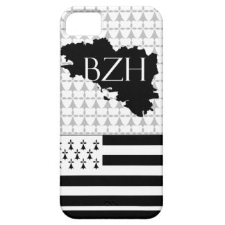 hull barely there for iPhone 5 breizh iPhone 5 Case