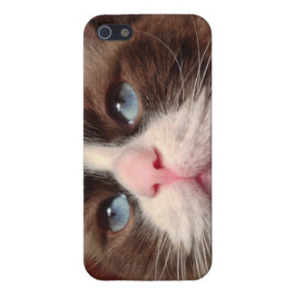 Hull of Iphone 5/5S with photograph of cat iPhone 5 Case