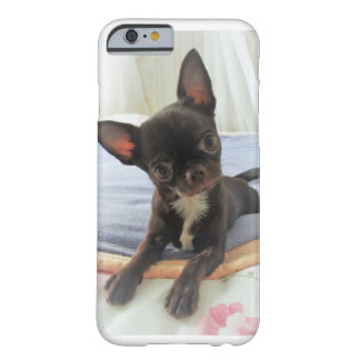 hull telephones white maroon chihuahua portrait barely there iPhone 6 case