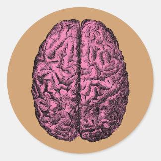 Human Anatomy Brain Round Sticker