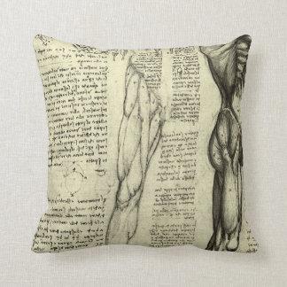 Human Anatomy Male Muscles by Leonardo da Vinci Throw Pillow