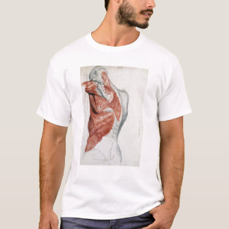 Human Anatomy; Muscles of the Torso and Shoulder T-Shirt