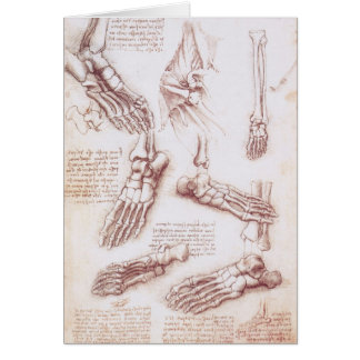 Human Anatomy Skeleton Foot Bones by da Vinci Card