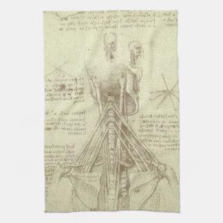 Human Anatomy Spinal Column by Leonardo da Vinci Kitchen Towel