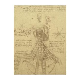 Human Anatomy Spinal Column by Leonardo da Vinci Wood Print