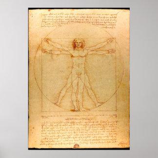 Human Anatomy, Vitruvian Man by Leonardo da Vinci Poster