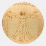 Human Anatomy, Vitruvian Man by Leonardo da Vinci Round Sticker
