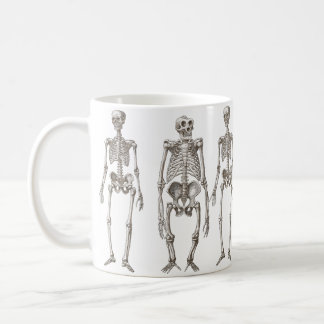 Human and Ape Skeletons Primate Missing Link Mug
