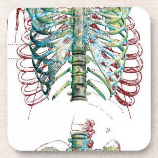 Human Body Rib Cage Beverage Coaster