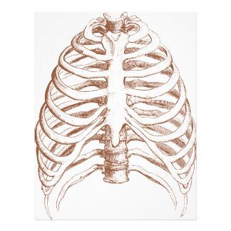 human bones letterhead