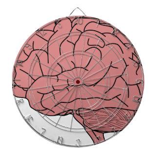 Human brain dartboard