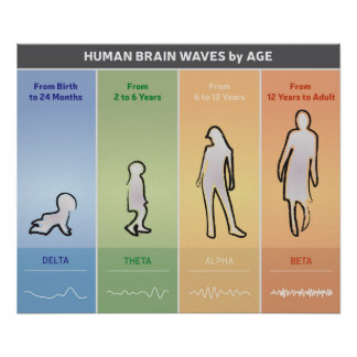 Human Brain Waves by Age Chart Diagram Multicolor Poster