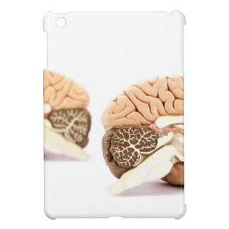 Human brains model isolated on white background iPad mini cases