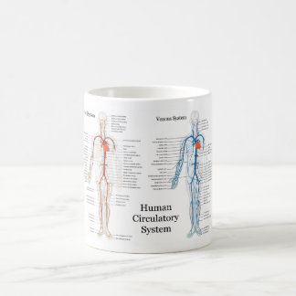 Human Circulatory System of Arteries and Veins Coffee Mug