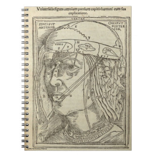 Human Head Notebooks