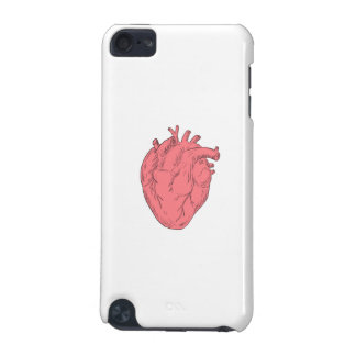 Human Heart Anatomy Drawing iPod Touch 5G Case
