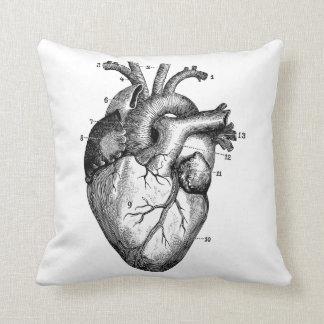 Human heart - anatomy pillow