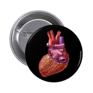Human heart button