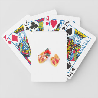 Human heart model isolated on white background poker deck