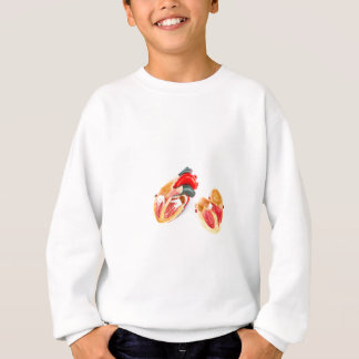 Human heart model isolated on white background sweatshirt
