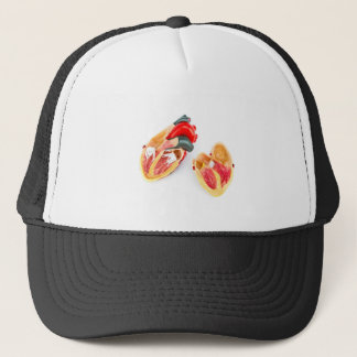 Human heart model isolated on white background trucker hat
