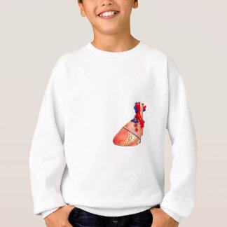Human heart model on white background sweatshirt