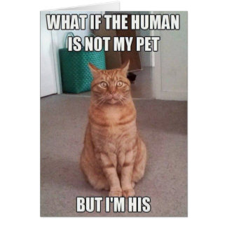 Human is not my pet card