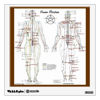 Human Meridians & Pressure Point Chart Wall Decal