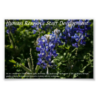 Human Resource Staff Development Blue Bonnets Poster