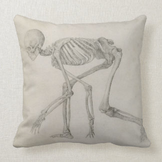 Human Skeleton: Lateral view in Crouching Posture, Throw Pillow