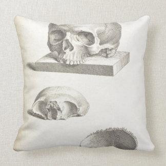 Human Skull Throw Pillows