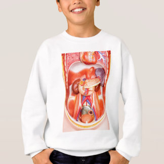 Human torso model with organs sweatshirt