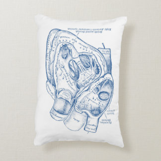 Human Vintage Anatomy Heart blue and white Accent Pillow