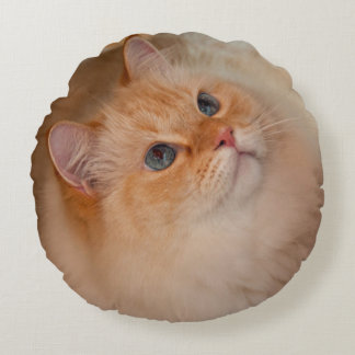 Humane Society cat Round Pillow