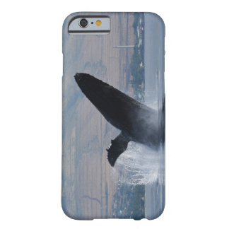 humback whale breaching barely there iPhone 6 case