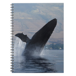 humback whale breaching notebook
