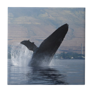 humback whale breaching tile