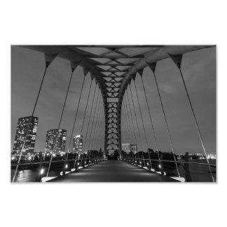 Humber Bay Arch Bridge Photo