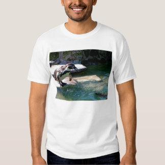 Humboldt penguin t shirts
