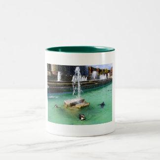 Humboldt penguins and fountains coffee mug